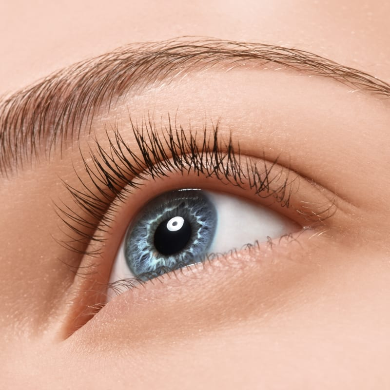 12 day eyelash perming training course london nationwide your message solutioingenieria Gallery
